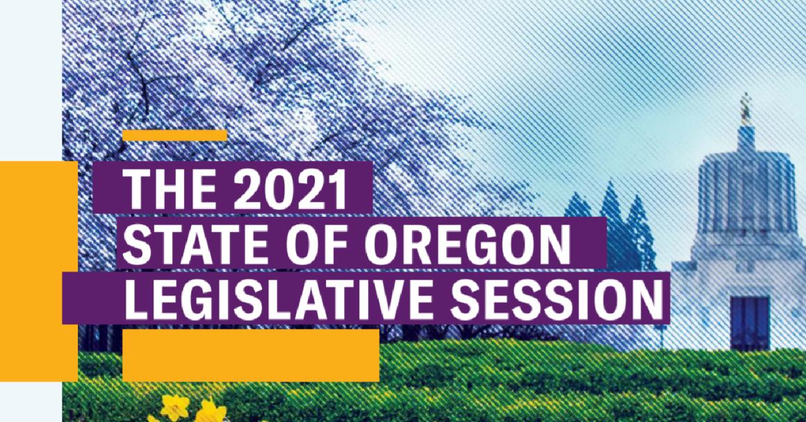 Legislative Session Report